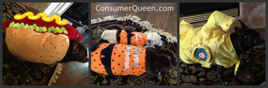 Royal Dogs Halloween