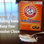 Homemade Dishwasher Cleaner
