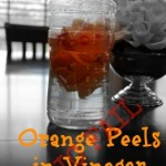 FAIL: Orange Peels in Vinegar