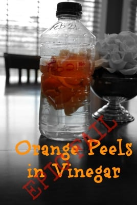 Orange Peels in Vinegar