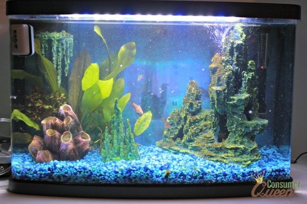 national geographic fish tank review