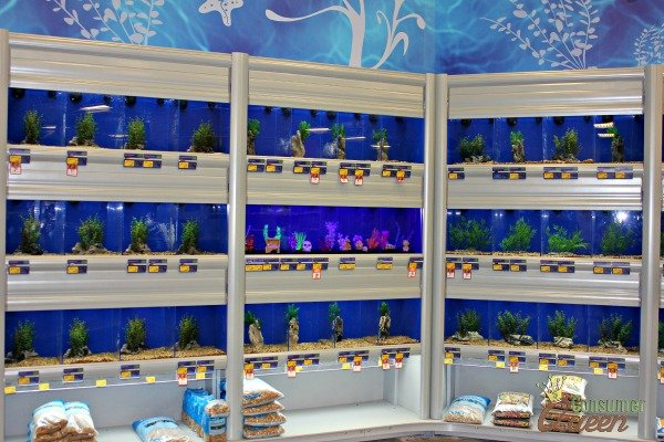 National geographic fish tank review for Fish tanks petsmart