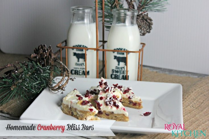 Homemade Cranberry Bliss Bars