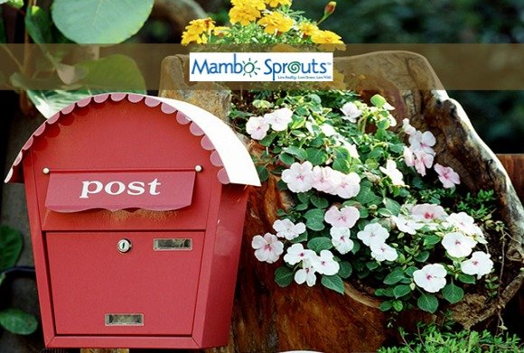 mambo_sprouts_coupon_book
