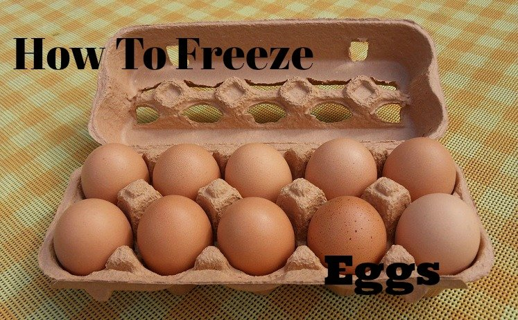 freeze eggs