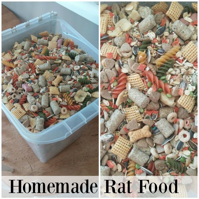 Homemade Rat food