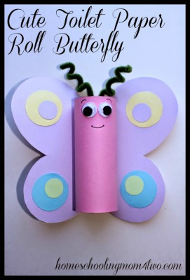 tp butterfly