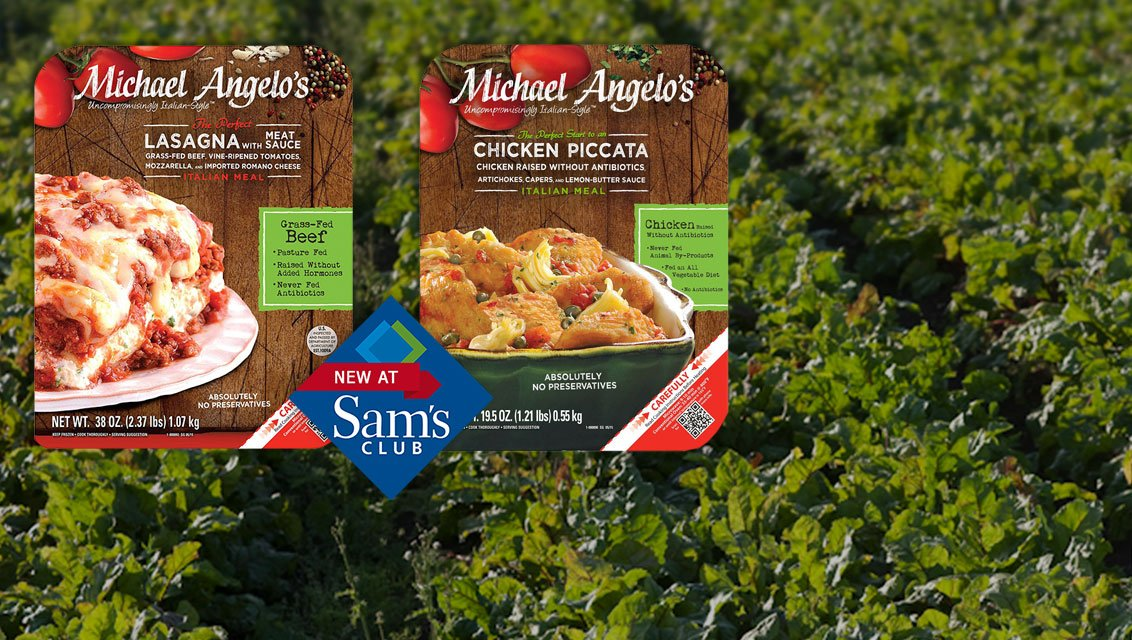 New Michael Angelo's Coupons!