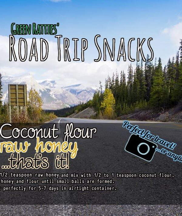 Holistic Pet Care: Green Ratties Road Trip Snacks