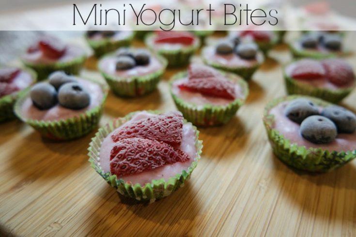 Mini Yogurt Bites