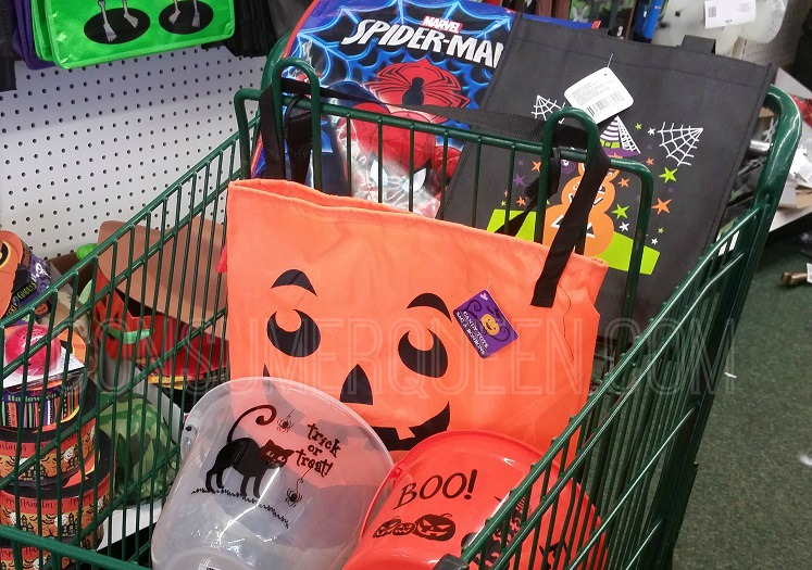 TOP 5 Reasons to Shop Dollar Tree For Halloween & Fall!