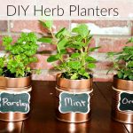 DIY Herb Planters With Repurposed Cans