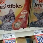 Meow Mix Irresistibles as Low as 36¢ at Homeland & Country Mart!