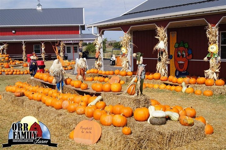 ORR Family Farm Tickets BOGO Free – Weekend Pass Just $7.98!