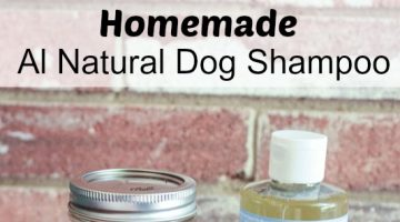 Homemade All Natural Dog Shampoo