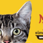 Free Sample of Meow Mix Simple Servings Cat Food