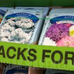 Garden Seeds Only 25¢ at Dollar Tree + More Spring Finds