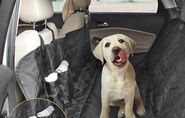 Amazon: Oak Leaf Car Seat Cover for Dogs $16.99