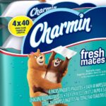 Sam's Club: Charmin Freshmates Flushable Wet Wipes 40-ct. $1.00 Each!