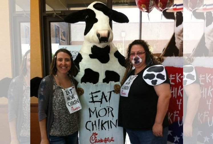 photograph regarding Cow Appreciation Day Printable Costume named Chick fil-A Cow Appreciation Working day 2019 Declared!
