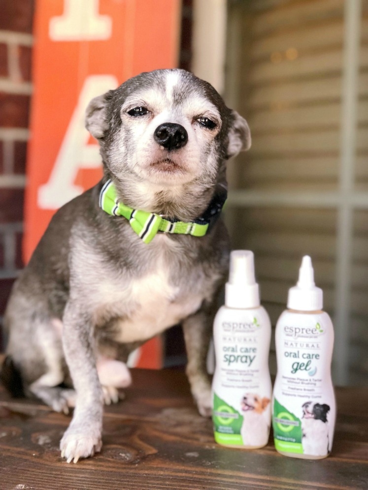 New! Introducing Espree®Natural Oral Care for Dogs and Cats