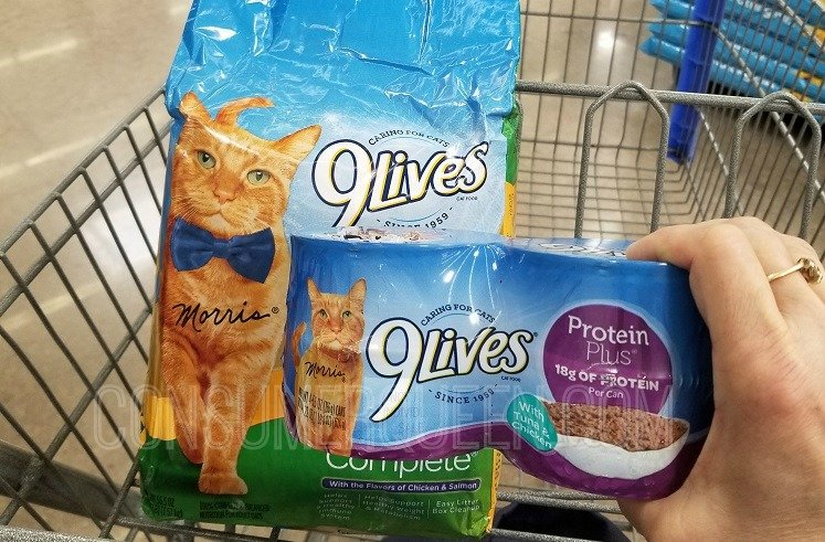 New 9 Lives Cat Food Coupons Walmart Matchups
