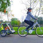 Allen Sports Deluxe 2-Child Bike Trailer $66.78 At Walmart