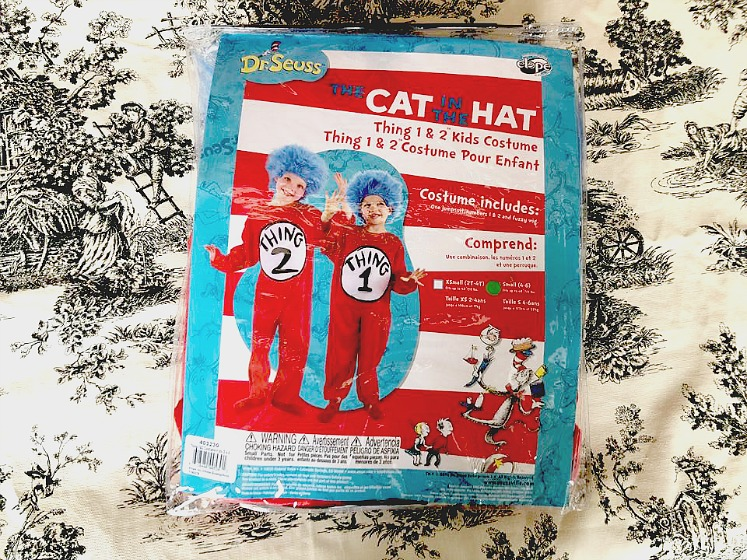 Find Dr. Seuss Halloween Costumes for a Fun Costume Idea