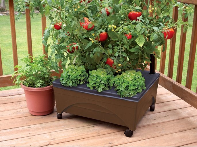 how to build a raised patio garden box