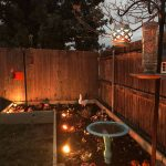 Enbrighten Landscape Lights Garden Makeover