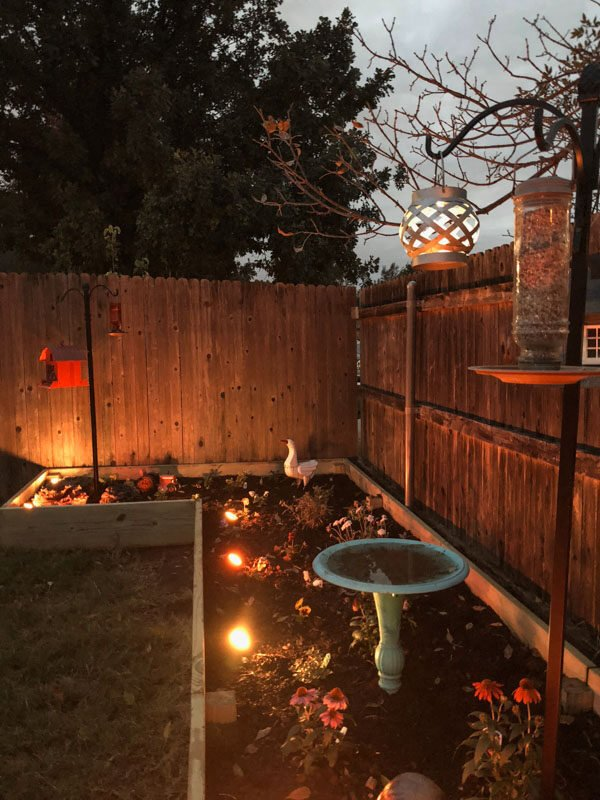 Enbrighten Landscape Lights Garden Makeover