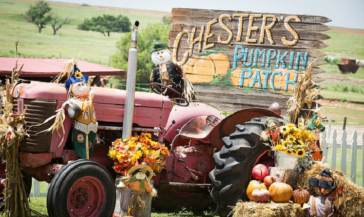Pumpkin Patch Deals for Oklahoma (Groupon) – Chesters, The Patch & More