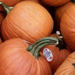 Halloween Pumpkins Only $2.49 at Aldi This Week