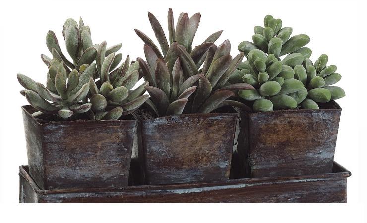 artificial plants succulent