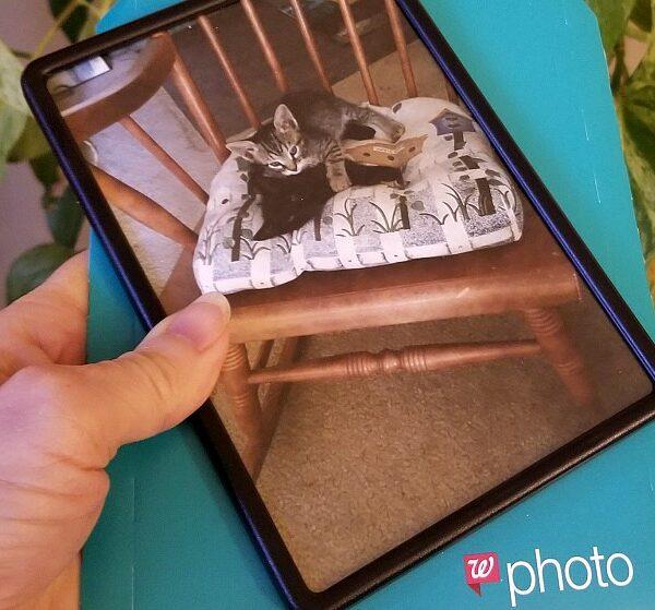 framed photo magnets