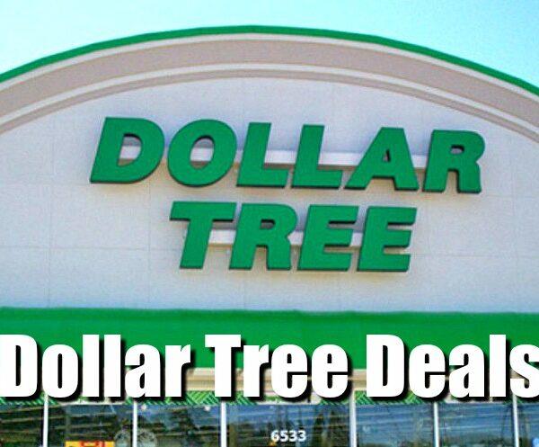 dollar tree deals