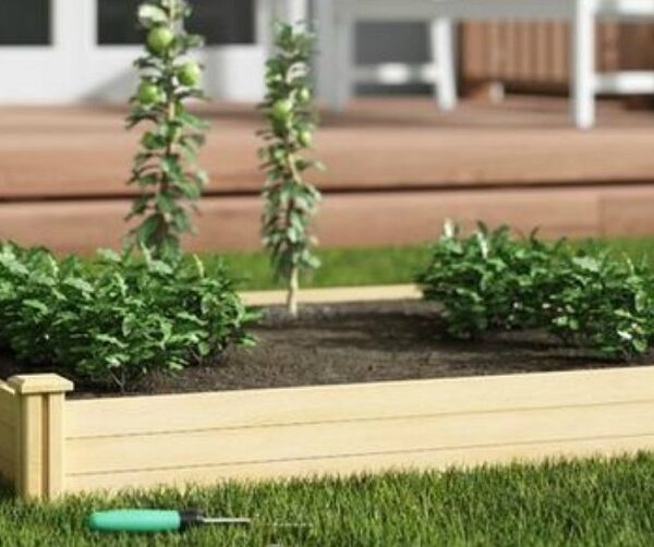 raised garden beds wayfair