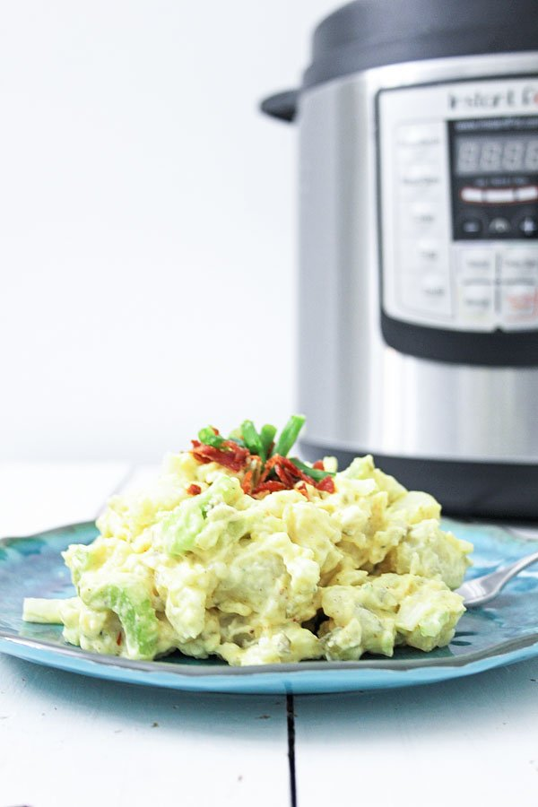 Instant Pot Potato Salad Plated Vertical