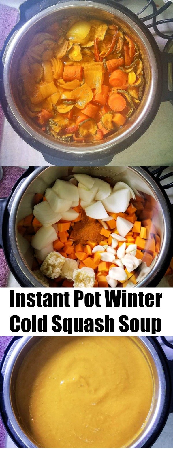 Instant Pot Winter Cold Squash Soup Pinterest