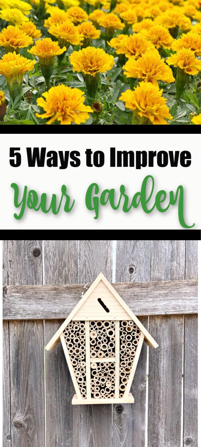 5 Ways to Improve Your Garden