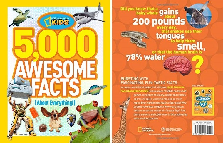 awesome facts about everything