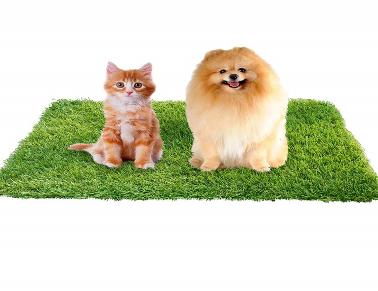 Artificial Grass for Dogs by kaizein 40% Off with Coupon on Amazon!