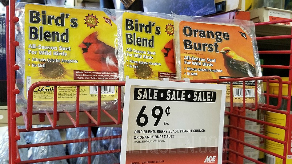 bird suet sale