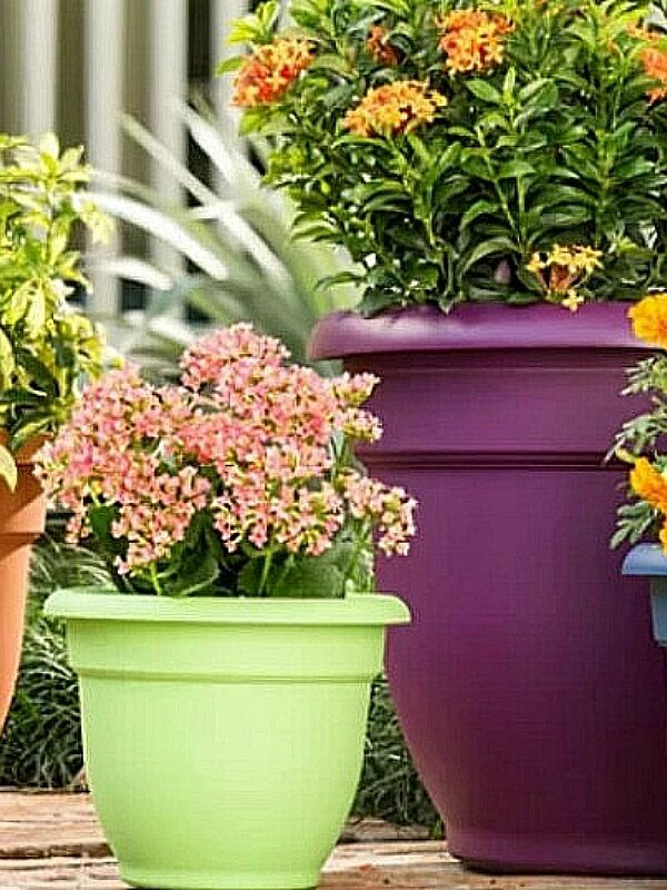 self watering planters at wayfair