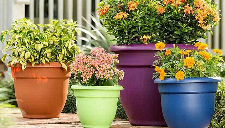 self watering planters at wayfair