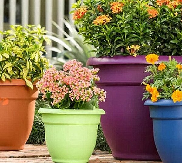 self-watering planters wayfair