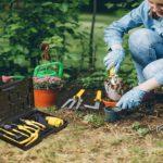 stainless steel garden tools