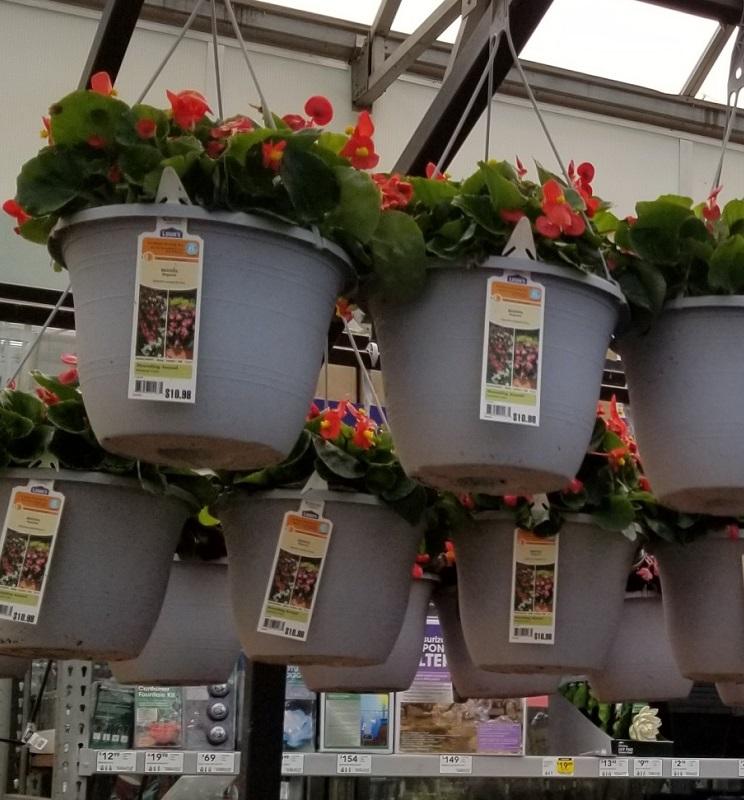 Lowe's Springfest Sale $7.50 Hanging Flower Baskets & More