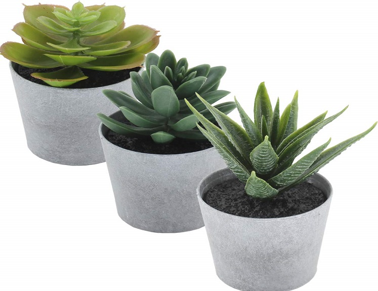 3 Faux Succulent Plants in Pots Just $9.99 on Amazon!