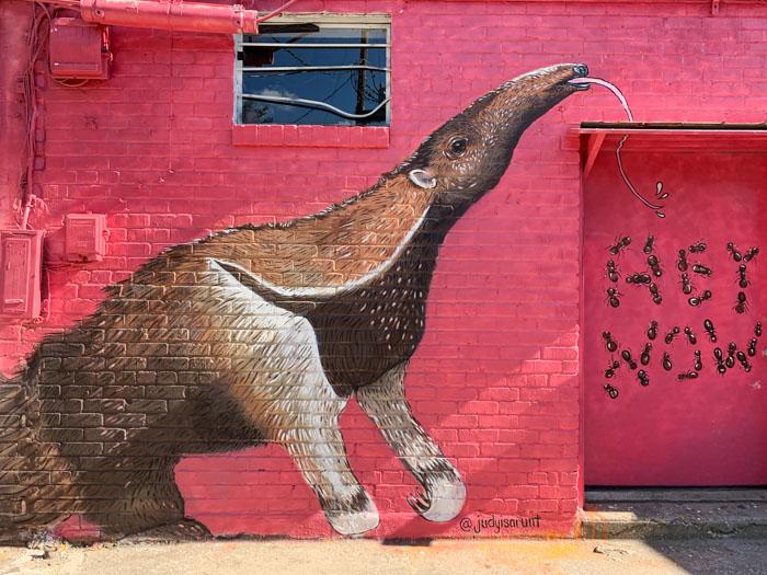 Ant eater Mural